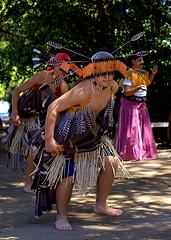 ok-acorn-festival-dancer
